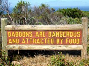 varning för babianerna