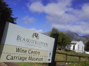 Vingård i Stellenbosch