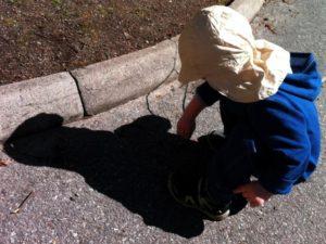 Vidar letar myror