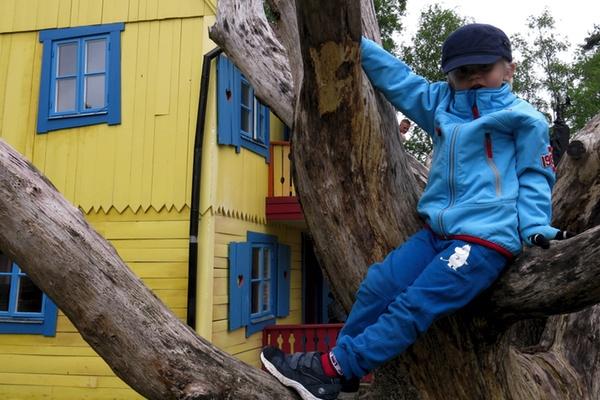 Vidar klättrar i träd