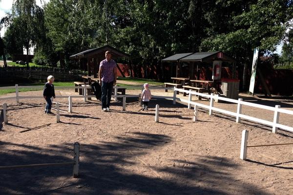 Erik och Vidar och Tyra vid käpphästarna
