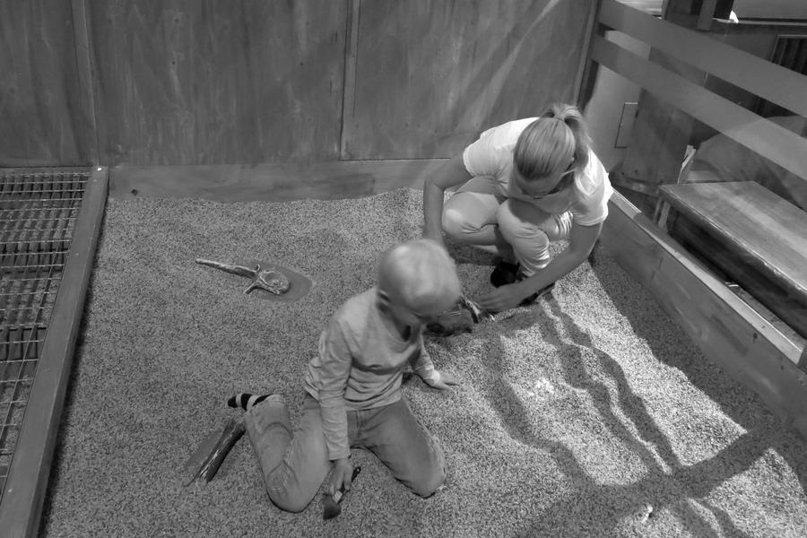 Vidar och jag leker paleontologer