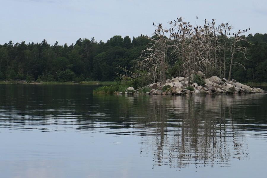 en fräck ö