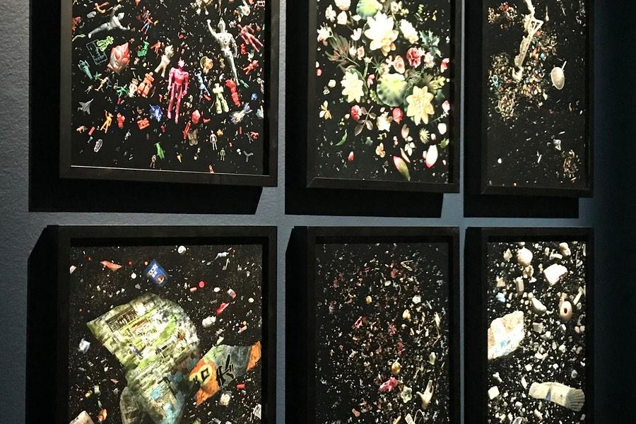 Några av Mandy Barkers bilder där hon har gjort konstverk av plast.