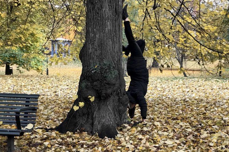 Jag står på händer mot ett träd i Humlegården.